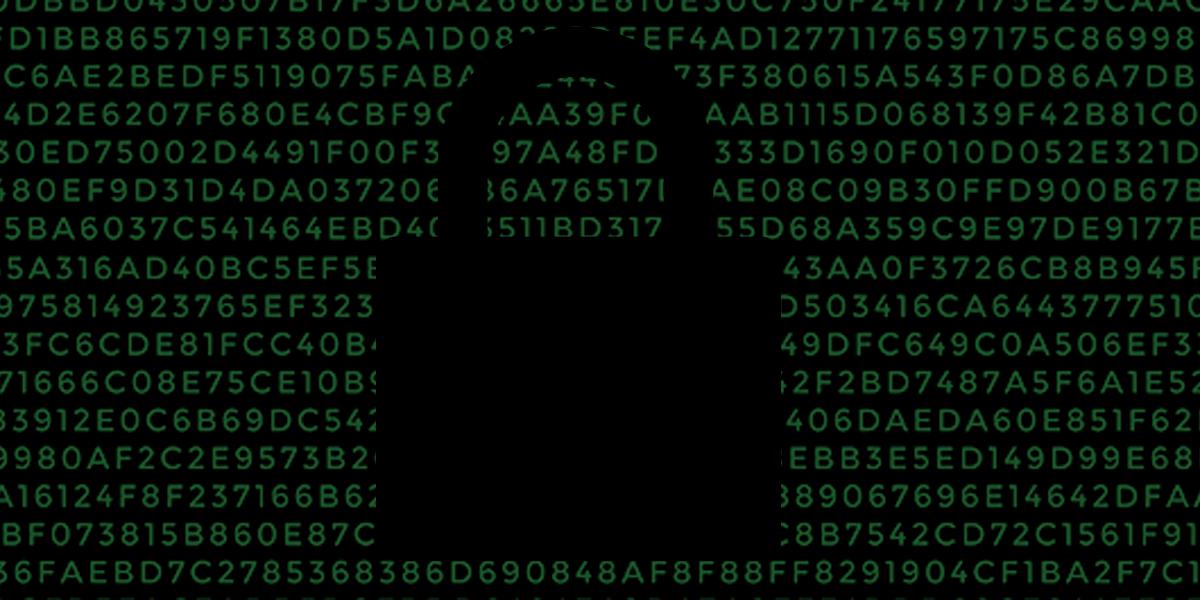 Nella nuova lotta per la privacy e la sicurezza online, Australia Falls: cosa succede dopo?