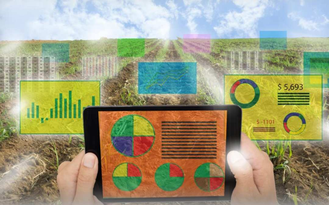 Annual report 2017 of the Agriculture sector