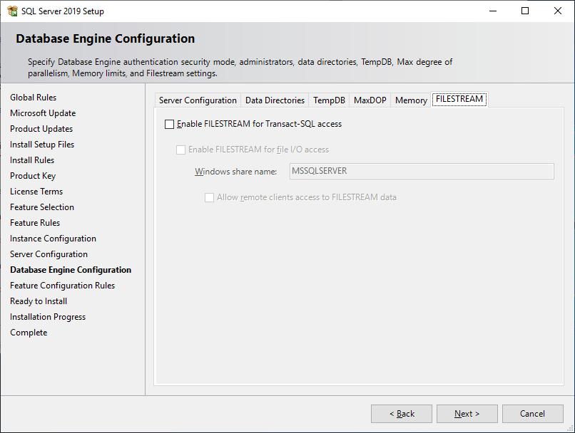 Microsoft Sql Server 2019 - Setup - Database Engine Configuration - File Stream