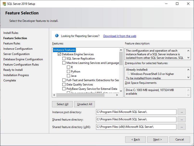 Microsoft Sql Server 2019 - Setup - Feature Selection - Database Engine Services
