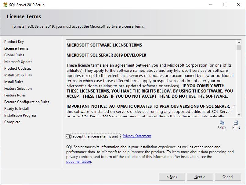 Microsoft Sql Server 2019 - Setup - License Terms - Tick