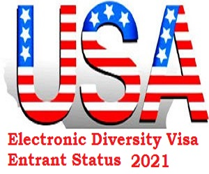 USA Electronic Diversity Visa (DV) Lottery Entrant Status Result checker 2021 for Selected Candidates