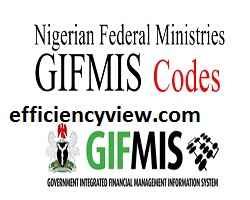 Photo of Npower Stipend Payment through Government Integrated Financial Management Information System (GIFMIS) Latest update