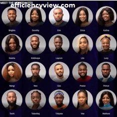 Bbn2020 names of Big Brother Naija season 5 Housemates