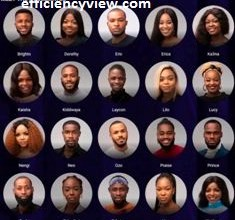 Photo of Full names of 2020 BBNaija Season 5 Housemates tagged Lockdown – Dorathy pix will surprised you