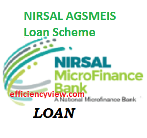 Photo of NIRSAL AGSMEIS Loan Scheme 2020-2023 – N10 million loans to entrepreneurs to grow SMEs