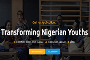 Photo of Transforming Nigerian Youth 2020 Application Form out under MSMEs Program apply here