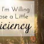 Why I'm Willing to Lose A Little Efficiency