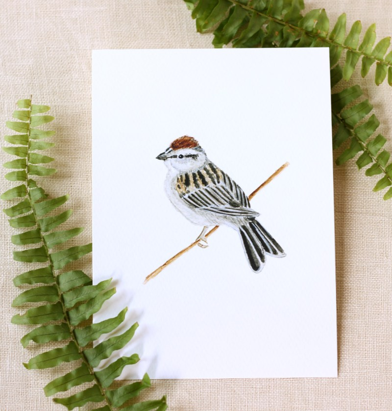 Pebble Creek Prints Bird Watercolor Print