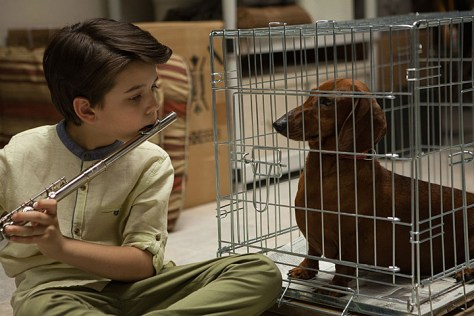 wiener-dog-sundance-review-pic
