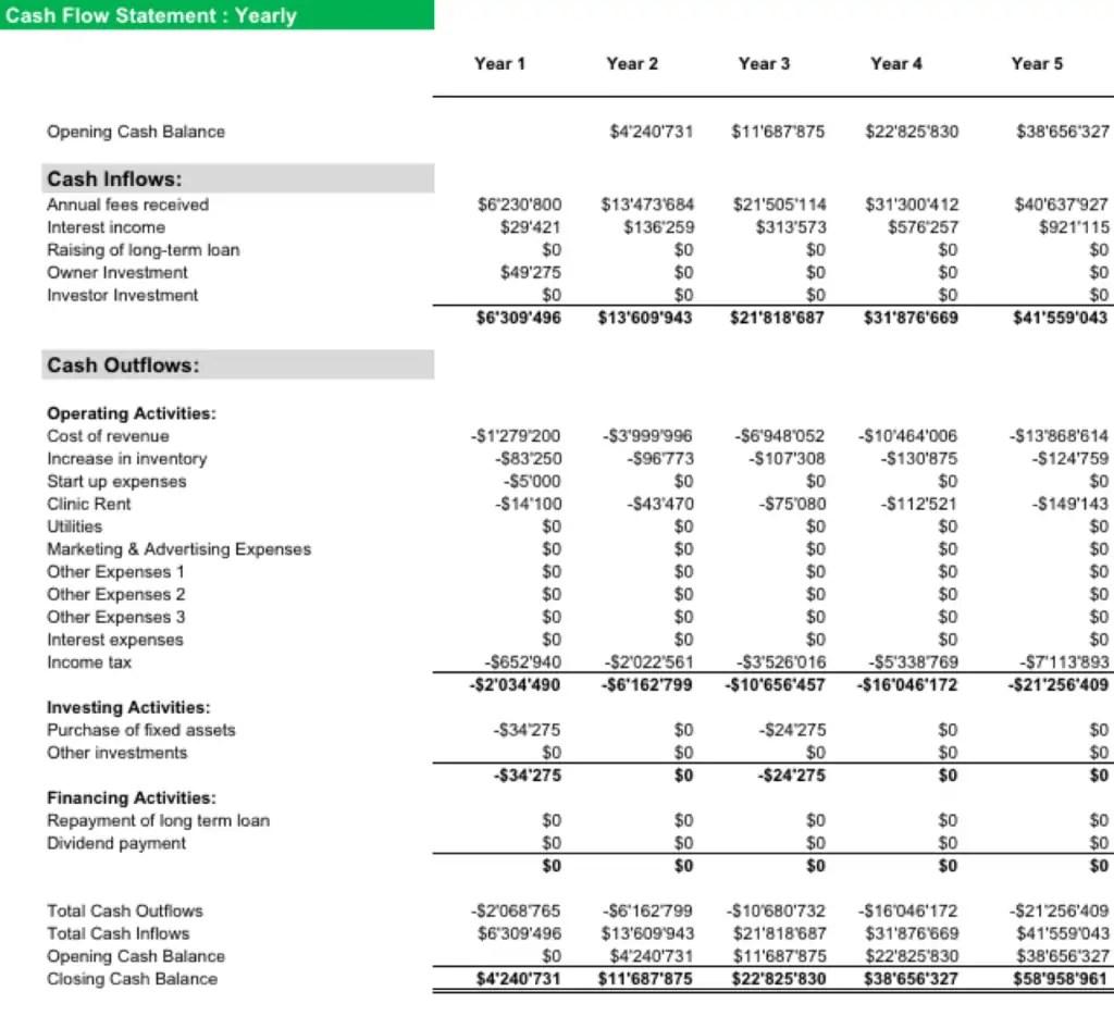 Healthcare Cash Flow Statement