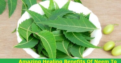 Healing Benefits Of Neem