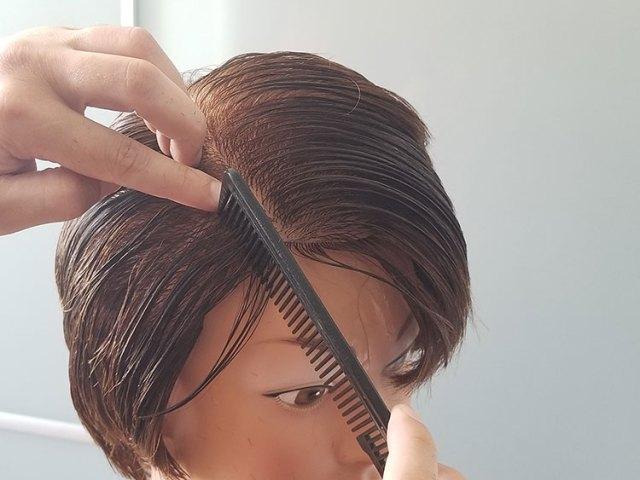 sekcionisanje kose