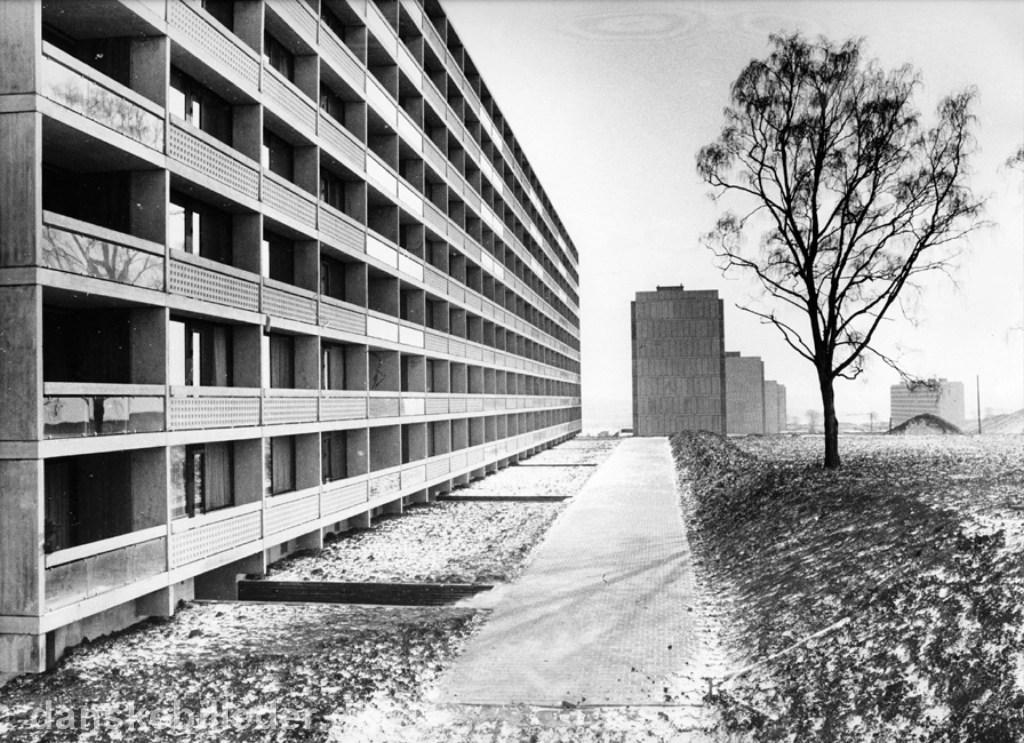 Hvad kan vi lære af 'betonjunglens' historie? 2. del