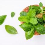 fresh-herbs-wooden-mortar