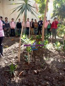 عقد ندوات لنشر الوعي البيئي وترشيد استهلاك المياه والتخلص الآمن من النفايات الخطرة |
