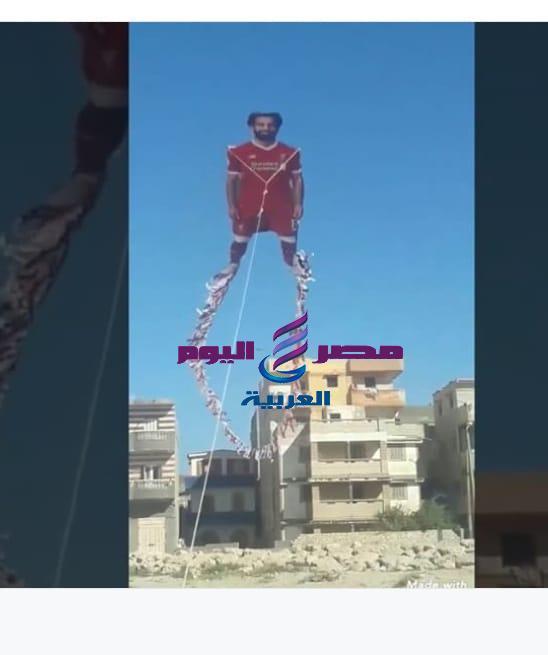 fatma elshbray |