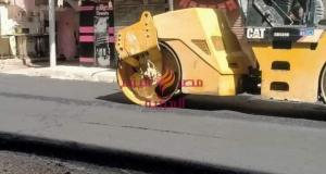 إعدام ٩ شيش وتحرير مخالفات عدم إرتداء كمامة بدمنهور . | إعدام