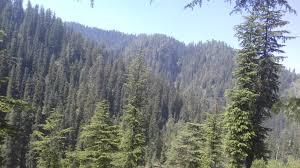 हिमाचल प्रदेश में राष्ट्रिय पार्क