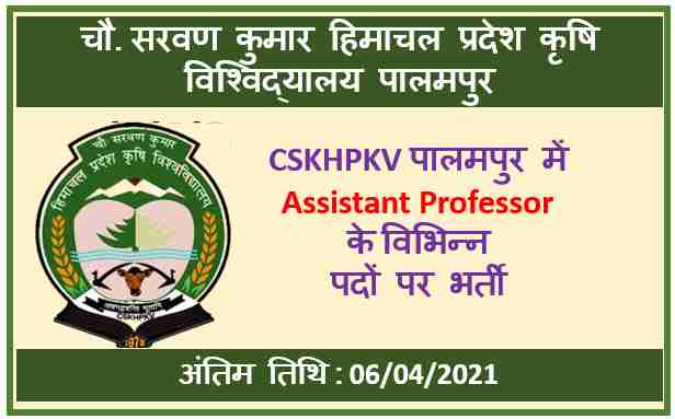 CSKHPKV Palampur Assistant Professor Recruitment 2021 : Apply Now