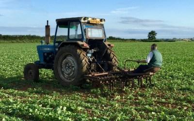 Tractor hoe