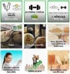 menu de la page boutique de eggnergy