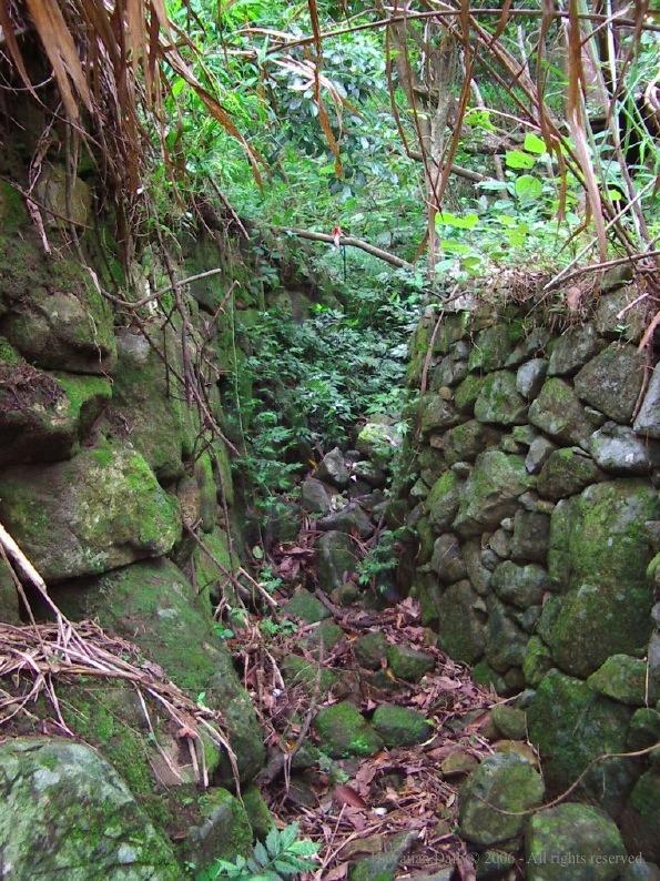 二人於小溪旁取道隱敝山徑,穿過密林沿小溪向上,攀山半小時後發現一處巨大石牆。
