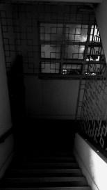 IMAG1555_1