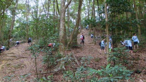 開幕前之植樹活動。