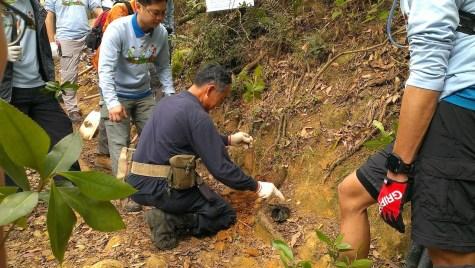 漁護署工友示範植樹。