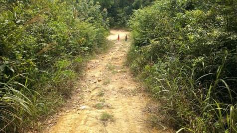 上山路段,全是浮沙碎石。