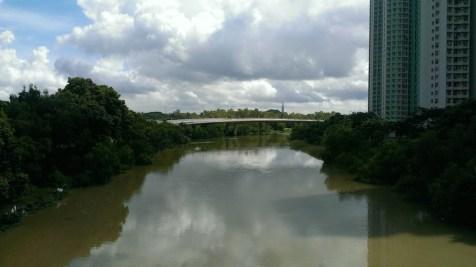 濕地公園外的河道。