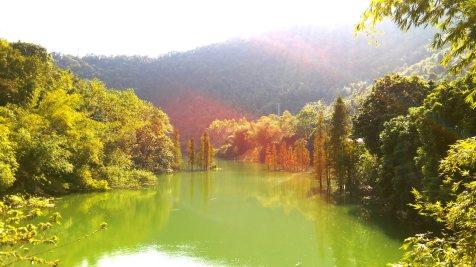 九坑河水庫一景。