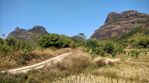 左邊是馬鞍山,右邊是馬仔山。我們要登上的,是馬鞍山的左邊山頂。