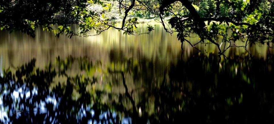流水響大概是最為人熟悉的灌溉水塘。