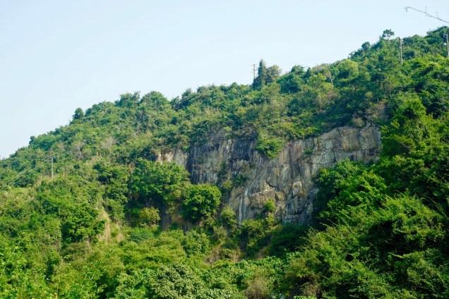 水塘不遠處,植物攀附在大岩壁上,構成另一個「香港之心」。
