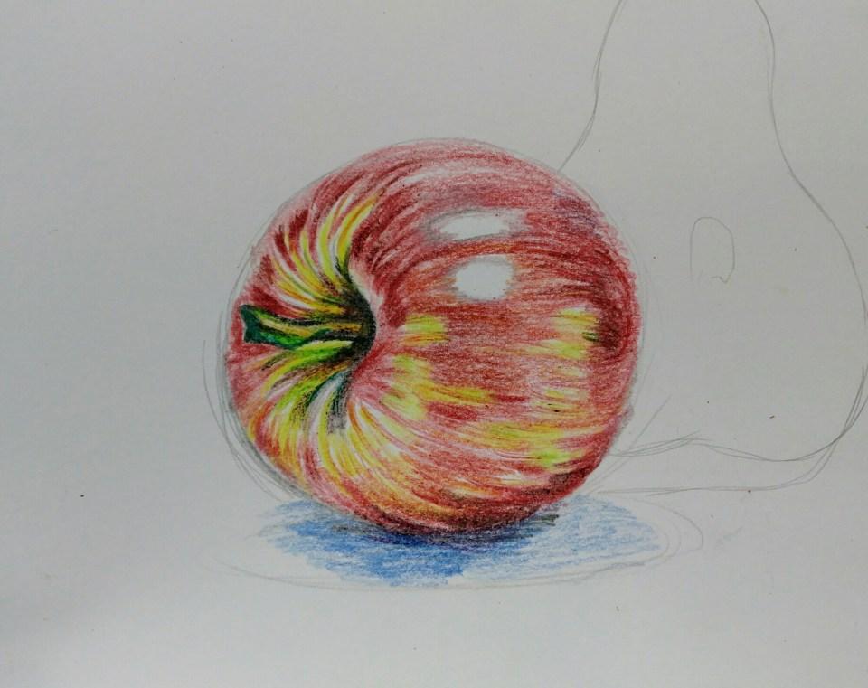 特別強調黃和綠,讓學生知道「蘋果不是紅色」。