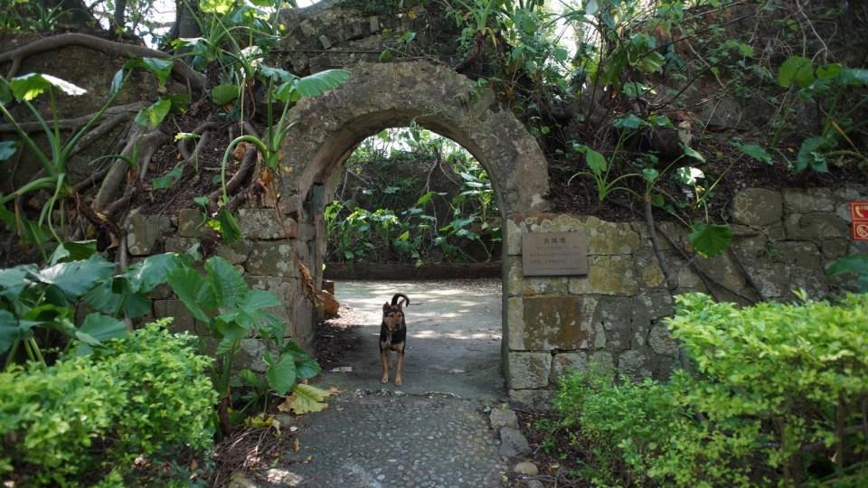 遊軍事禁地三門島,從「祖國眼睛」、爛尾度假村、軍用雷達、防空隧道看小島興衰