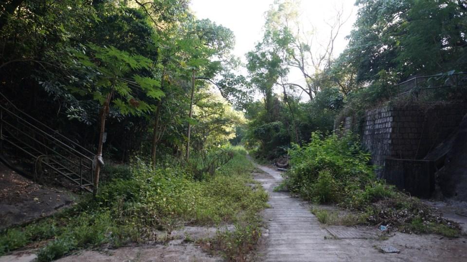 九龍入口路基延伸至現今的九龍塘站。
