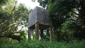 禾坑的水塔。