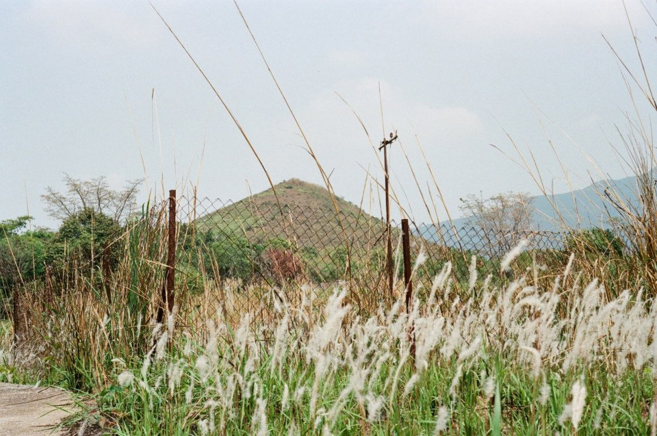 蓮塘香園圍口岸前(原裝西門子配置)。。