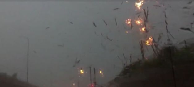 Video: Watch this motorist's shocking encounter with lightning