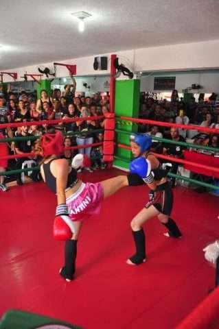 Universo-Fight-Im.002-1-e1534534643706 Title category
