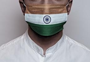 Champignon Noir Inde Covid : Inde Ce Que L On Sait Sur Le Champignon Noir Touchant Les Patients Atteints Du Covid 19 Egora Fr
