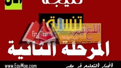 Photo of نتيجة المرحلة الثانية لتنسيق الجامعات 2019 | الحد الأدنى لطلاب الأدبي