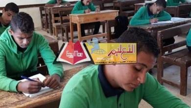 Photo of برنامج إصلاح التعليم : الانتهاء من تطوير المناهج الفنية نهاية العام الحالي