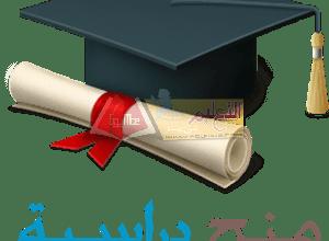 Photo of التعليم العالي : منح دراسية مقدمة من الهند والمجر