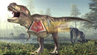 Photo of علماء يتوصلون لنتائج مهمة عن أسباب انقراض الديناصورات