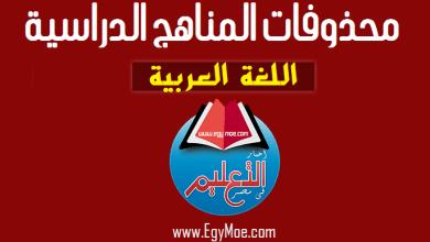 Photo of حذف بعض دروس اللغة العربية لطلاب الدمج بالثانوية العامة 2020