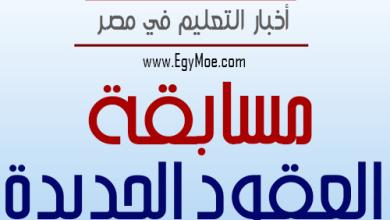 Photo of أمهات مصر عن الإستعانة بالمؤهلات العليا بـ 20 جنيها للحصة : مش بنبيع طماطم